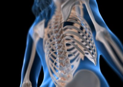 3d rendered medically accurate illustration of a womans spine